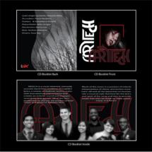 12 CD Booklet copy